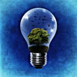 environment-1392332_640